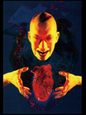 闇の心臓写真