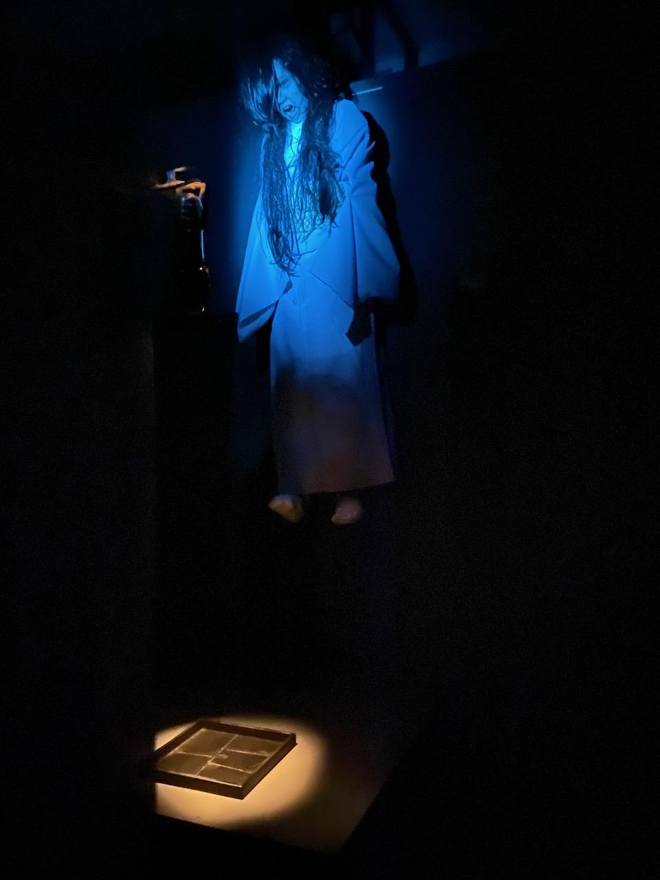 「闇のとおりゃんせ」写真